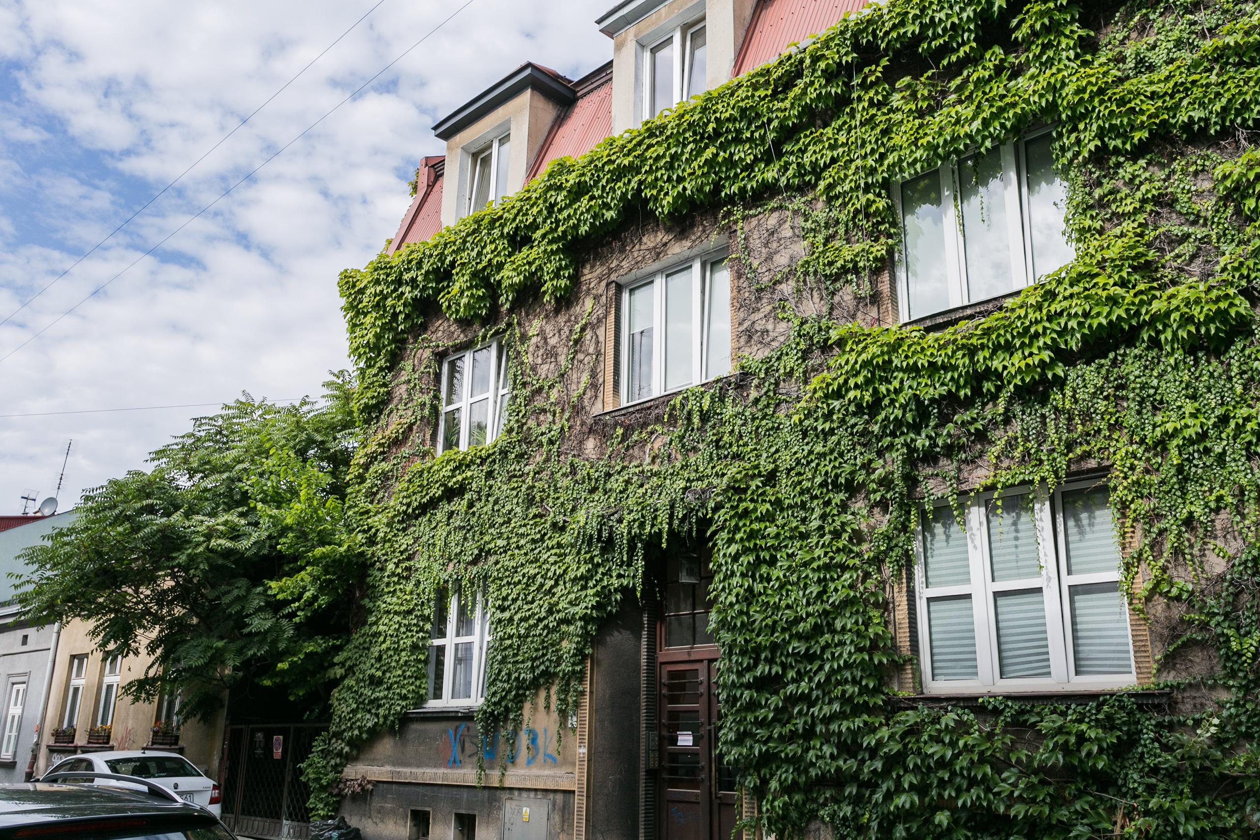 Apartamenty na wynajem - Dębniki, Kraków photo